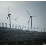 land_of_windmills