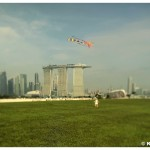 Singapore_Awakens_Preview6